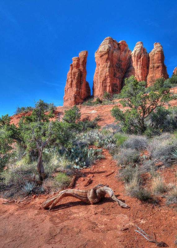 Cathedral Rock Art Print featuring the photograph Cathedral Rock by Lori Deiter