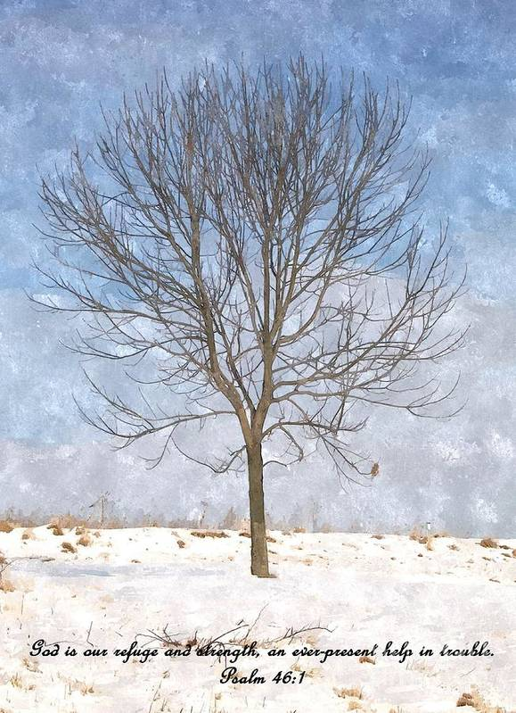 Tree Art Print featuring the photograph Inspirations 3 by Sara Raber