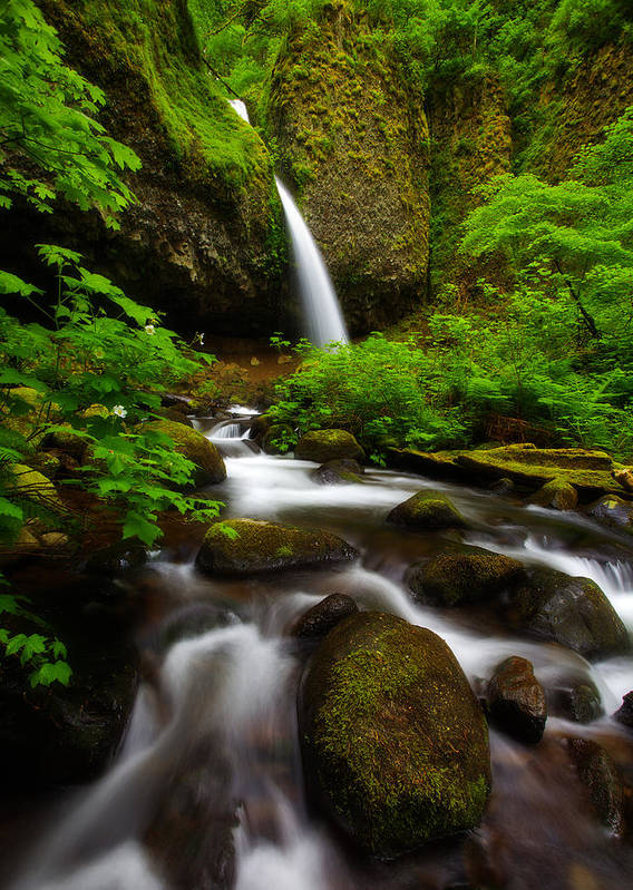 Waterfalls Art Print featuring the photograph Ponytail Dreams by Darren White