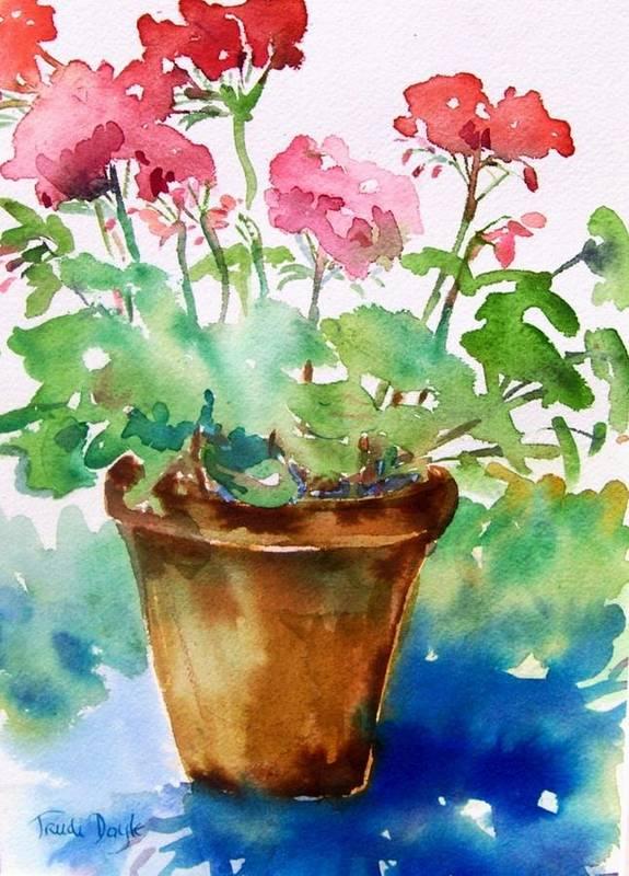 Geranium Art Print featuring the painting Red Pelargonium by Trudi Doyle