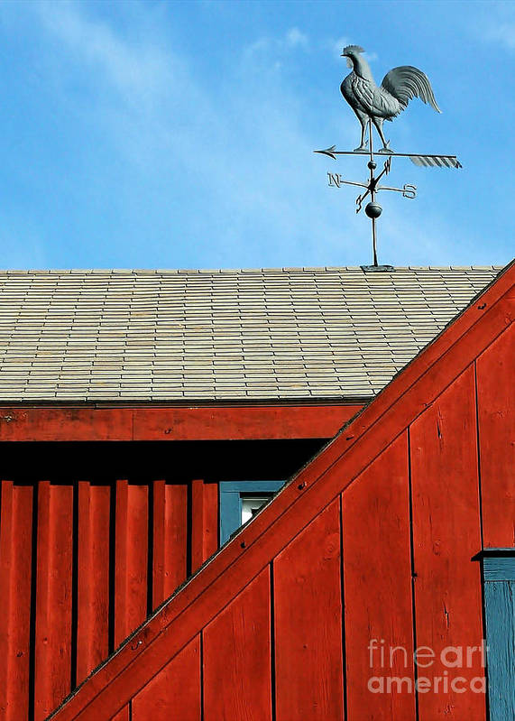 Landscape Art Print featuring the photograph Rooster Weathervane by Sabrina L Ryan