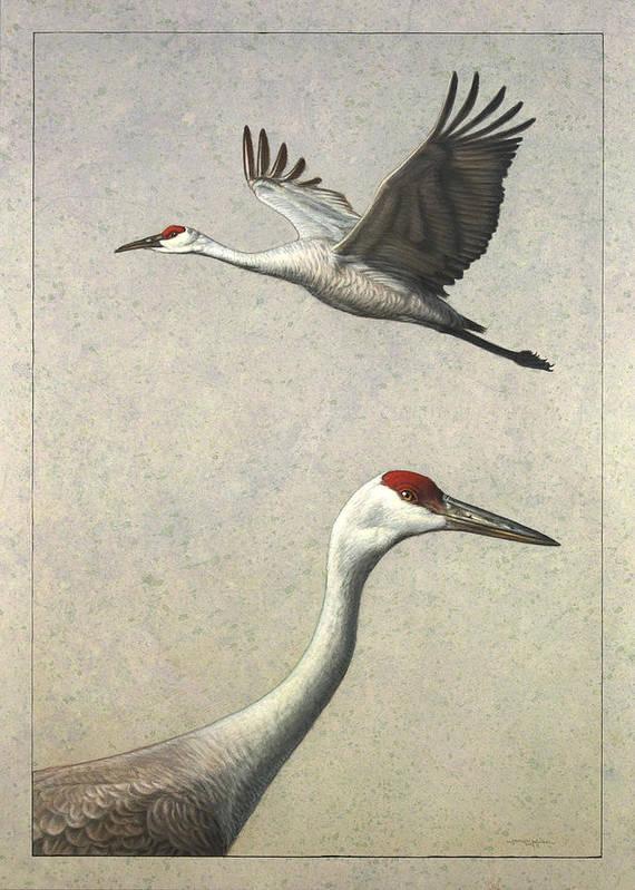 Crane Art Print featuring the painting Sandhill Cranes by James W Johnson