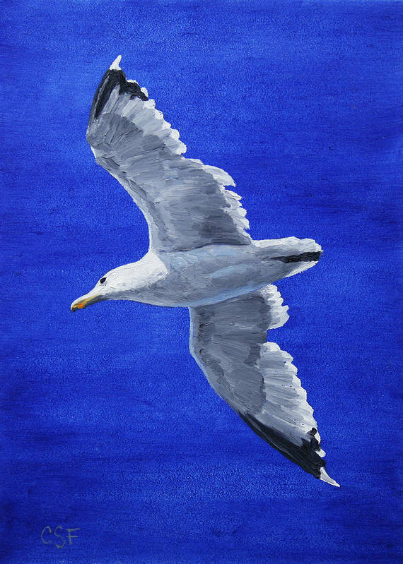 Bird Print featuring the painting Seagull In Flight by Crista Forest