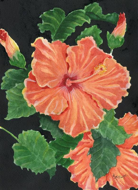 Hibiscus Art Print featuring the painting Showy Hibiscus by Marsha Elliott