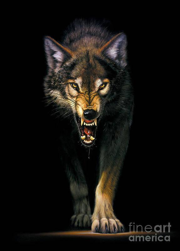 Animal Art Print featuring the photograph Stalking Wolf by MGL Studio - Chris Hiett