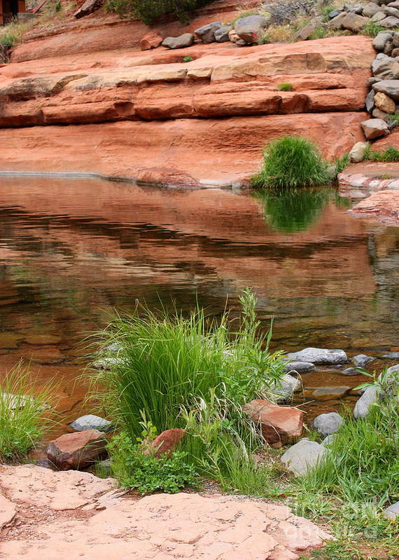 Sedona Art Print featuring the photograph Still Waters At Slide Rock by Carol Groenen