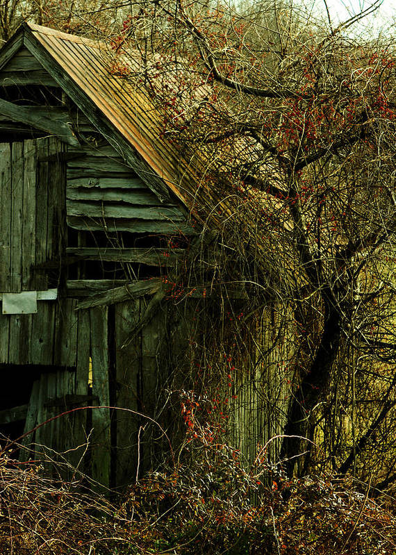Barn Print featuring the photograph There Will Come Soft Rains by Rebecca Sherman