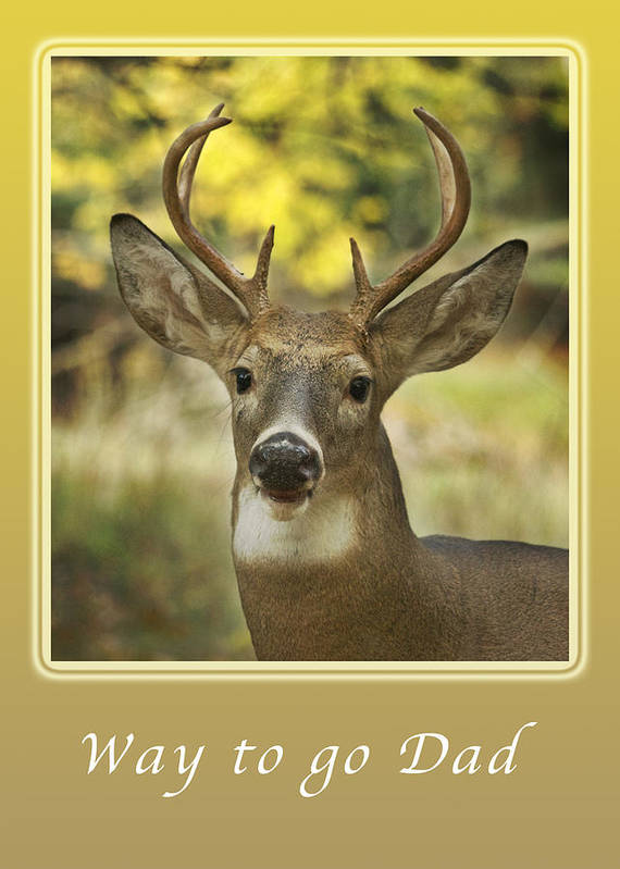 Deer Art Print featuring the photograph Way To Go Dad Congratulations On A Successful Deer Hunt by Michael Peychich