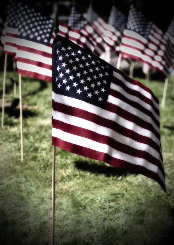 Flag Art Print featuring the photograph An American Flag by Donna Greene