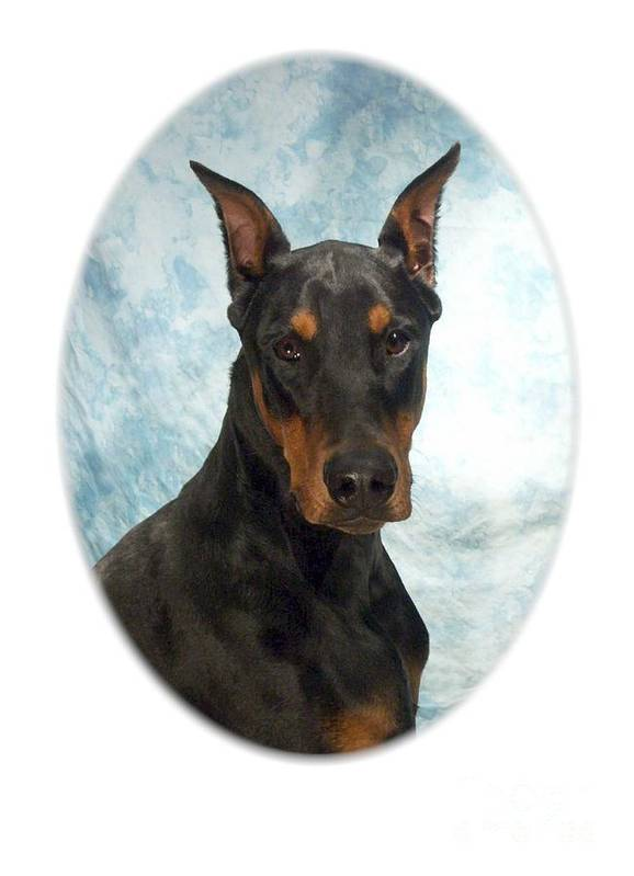 Doberman Pinscher Digital Art Art Print featuring the digital art Doberman Pinscher 100 by Larry Matthews