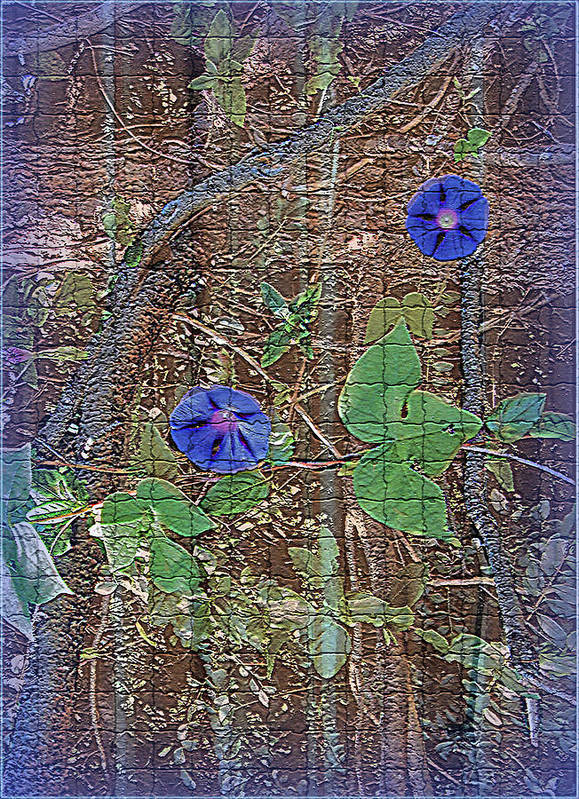 Digital Art Print featuring the photograph Glory In Blue by Larry Bishop