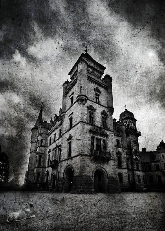 Palace Art Print featuring the photograph Haunted 2 by Laura Melis