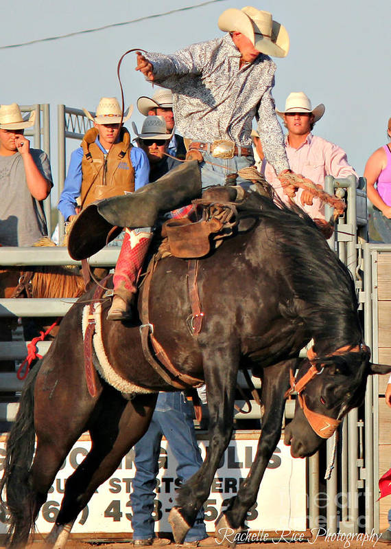 Cowboy Art Print featuring the photograph Ranch Bronc Rider by Rachelle Rice