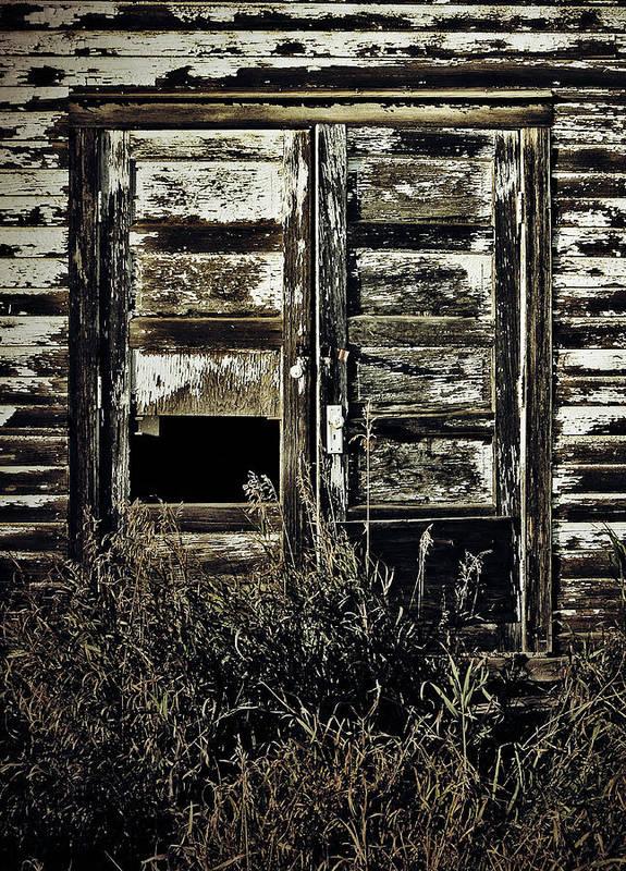 Jerry Cordeiro Framed Prints Photographs Photographs Photographs Art Print featuring the photograph Wild Doors by Empty Wall