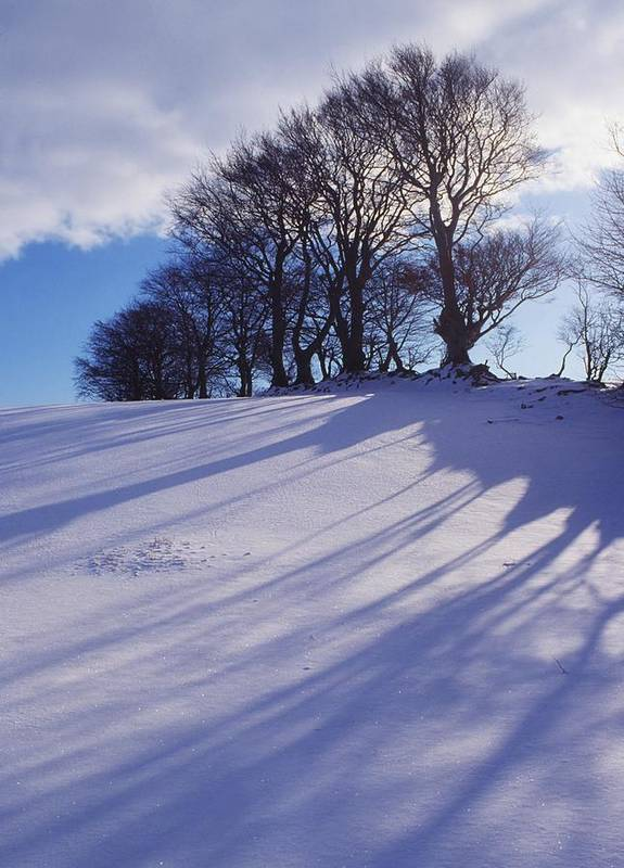 Beauty In Nature Print featuring the photograph Winter Landscape by The Irish Image Collection