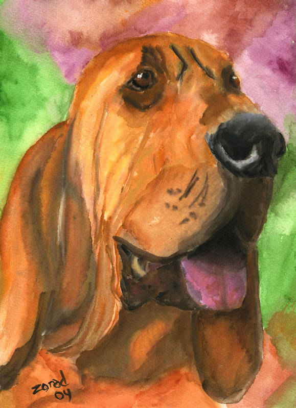 Dog Art Art Print featuring the painting Bloodhound Dog Art by Mary Jo Zorad