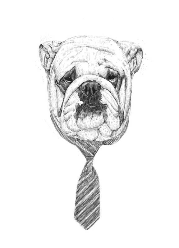 Dog Art Print featuring the drawing Cooldog by Balazs Solti