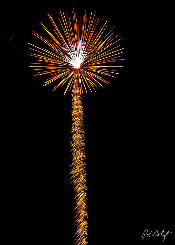July 4th Print featuring the photograph Dandelion by Phill Doherty