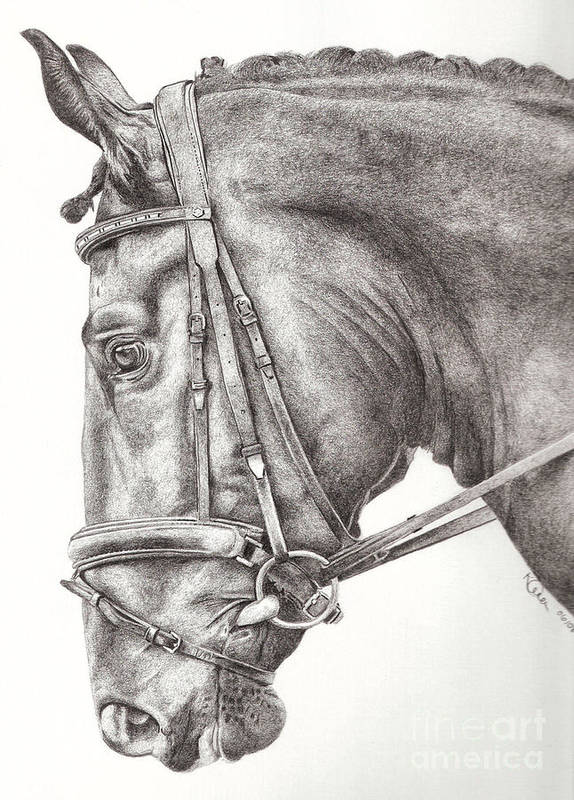 Horse Art Print featuring the drawing Dobbin by Karen Townsend