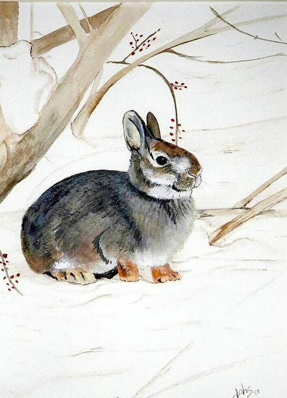 Rabbit Art Print featuring the painting Early Snow by Debra Sandstrom