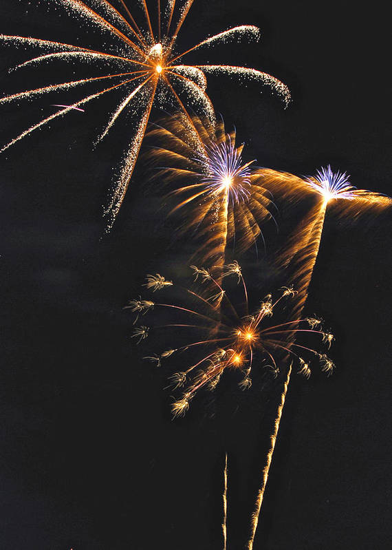 Fireworks Art Print featuring the photograph Fireworks 3 by Michael Peychich