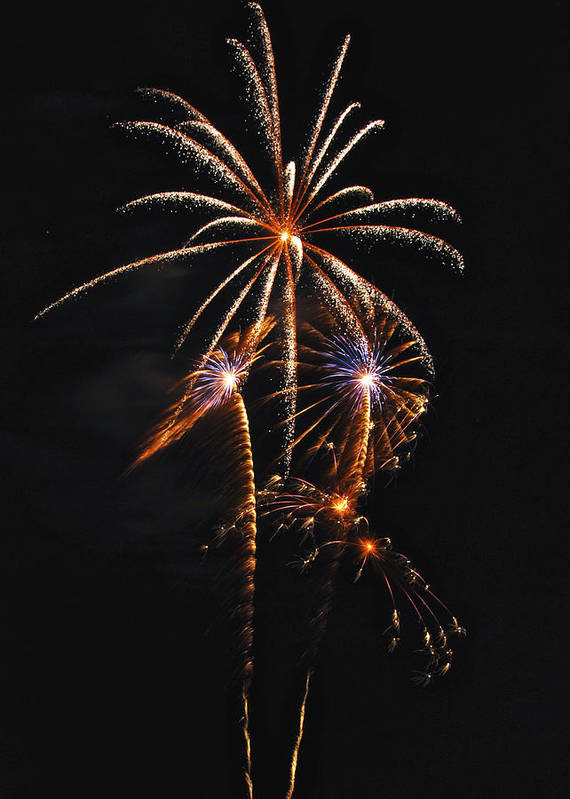 Fireworks Art Print featuring the photograph Fireworks 5 by Michael Peychich
