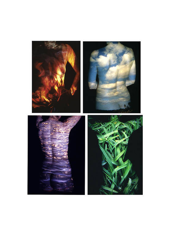 Nature Fusion Art Print featuring the photograph Four Elements by Arla Patch