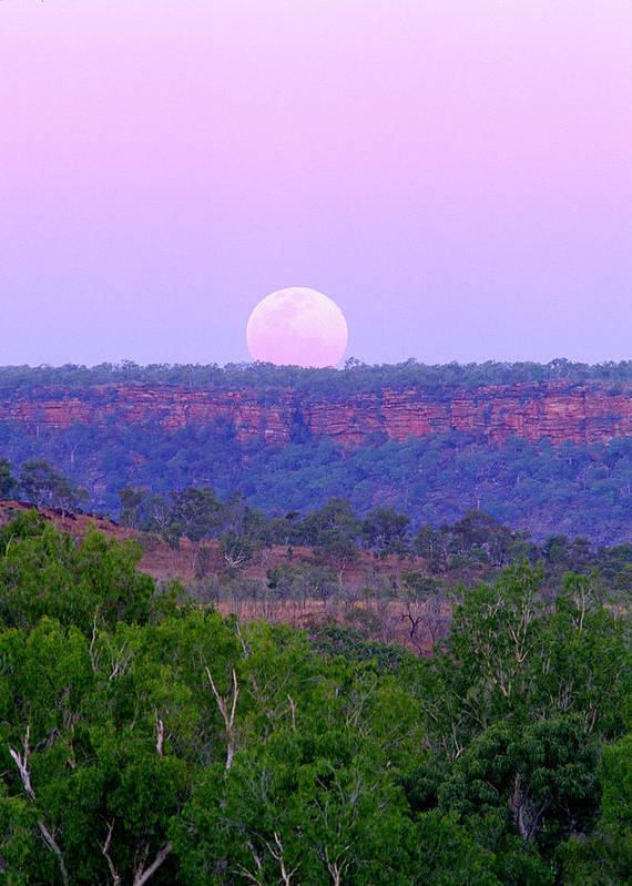 Outback Australia Art Print featuring the photograph Mt Barnett Moon by Tom Keating