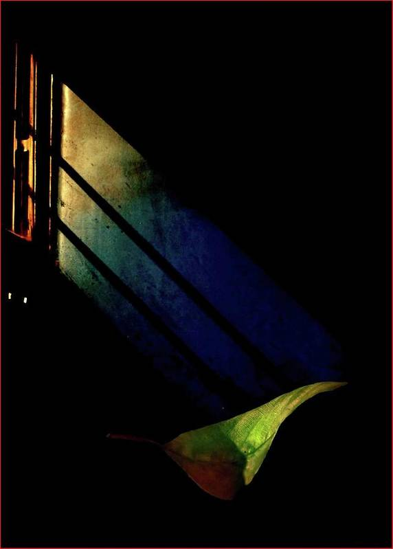 Life Art Print featuring the photograph Photoart by Soumya Sankar