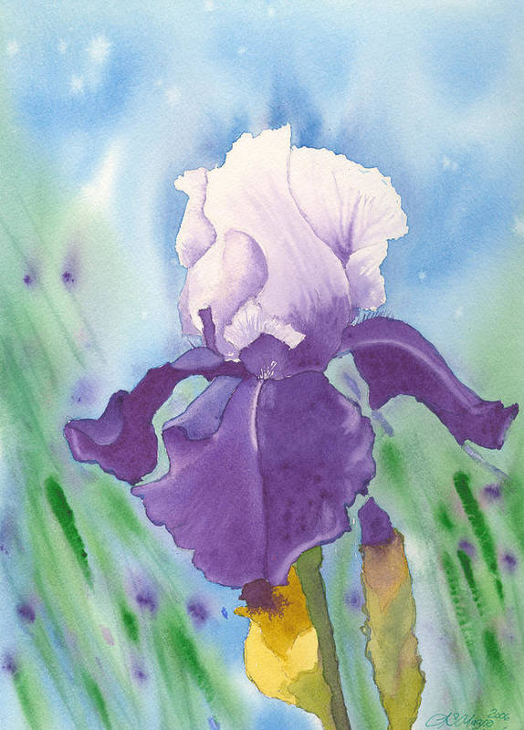 Iris Art Print featuring the painting Purple by Louise Magno
