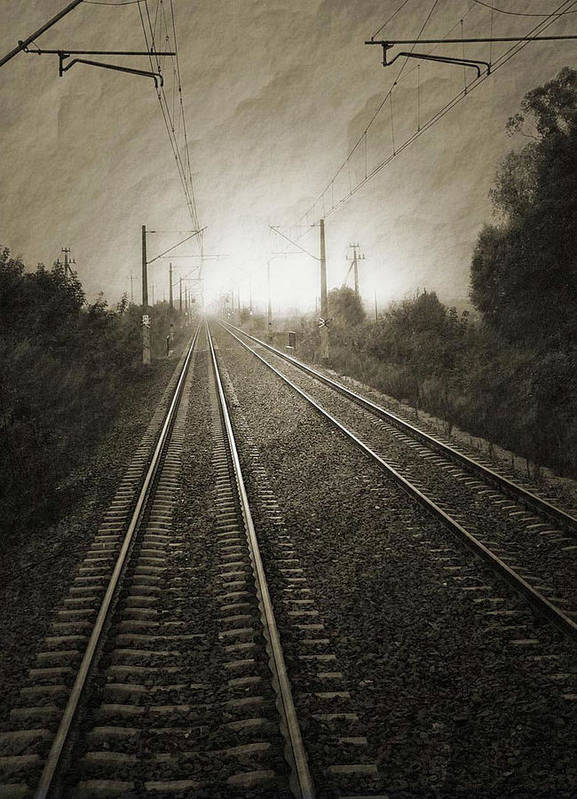 Train Art Print featuring the photograph Rails by Angela Wright