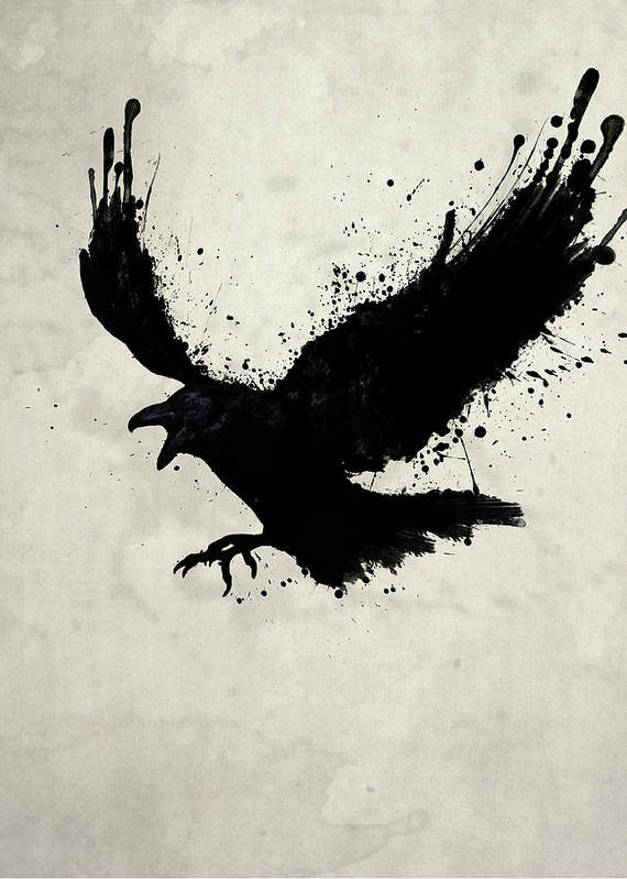 Raven Art Print featuring the drawing Raven by Nicklas Gustafsson