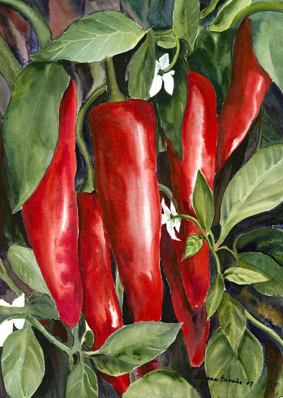 Red Chili Peppers Art Print featuring the painting Red Chili Peppers by Ileana Carreno