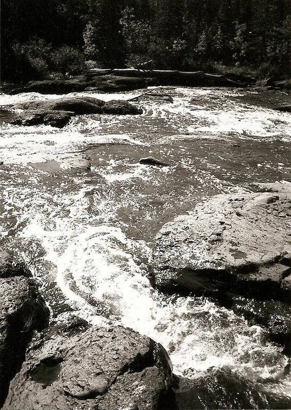 Photograph Art Print featuring the photograph River Coming Your Way by Patricia Bigelow