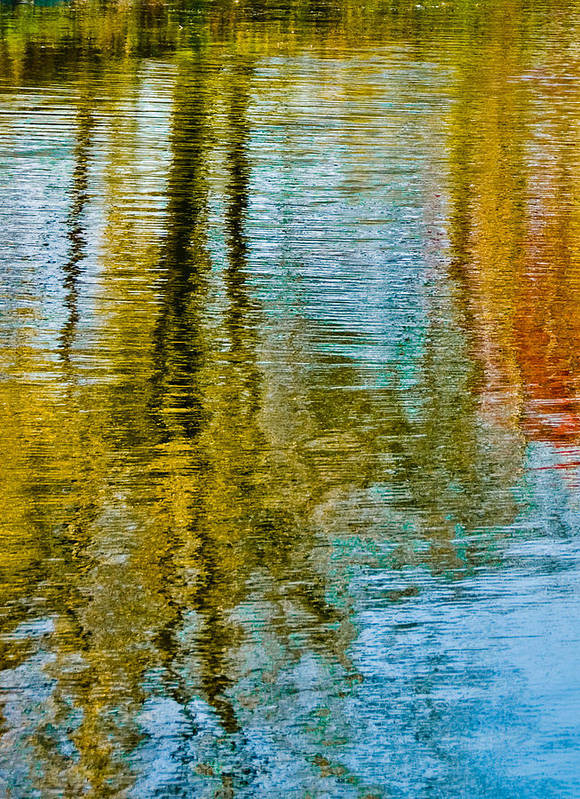 Silver Art Print featuring the photograph Silver Lake Autum Tree Reflections by Michael Bessler