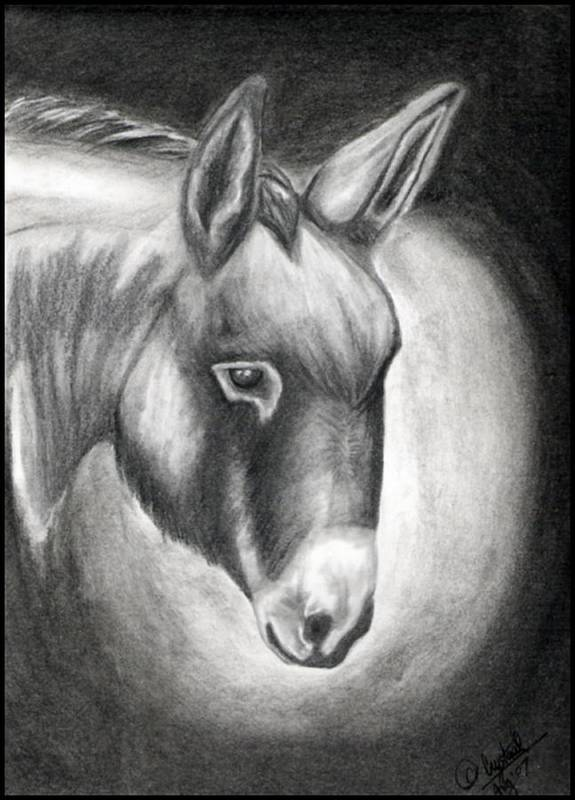 Portrait Art Print featuring the drawing Slick by Crystal Suppes