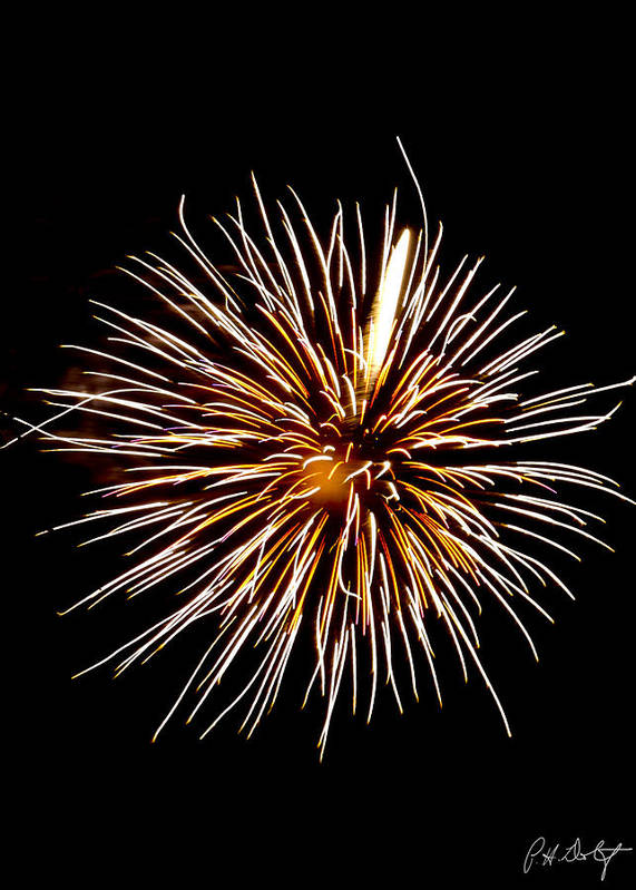 July 4th Art Print featuring the photograph Spider Ball by Phill Doherty