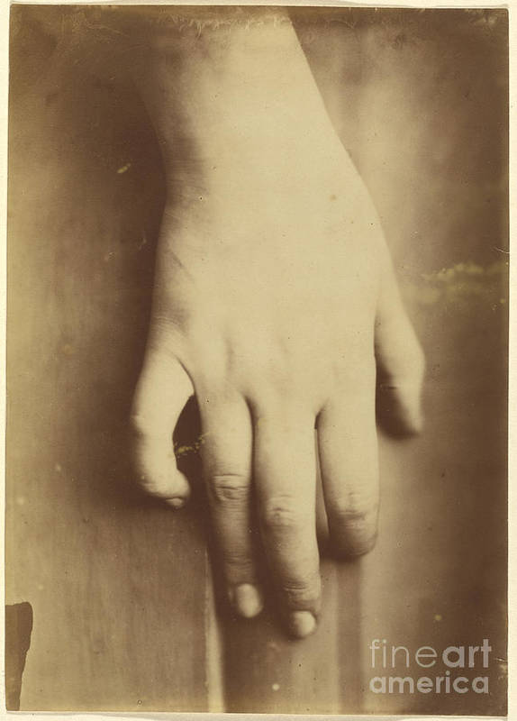 Art Print featuring the photograph Study Of A Hand by European 19th Century