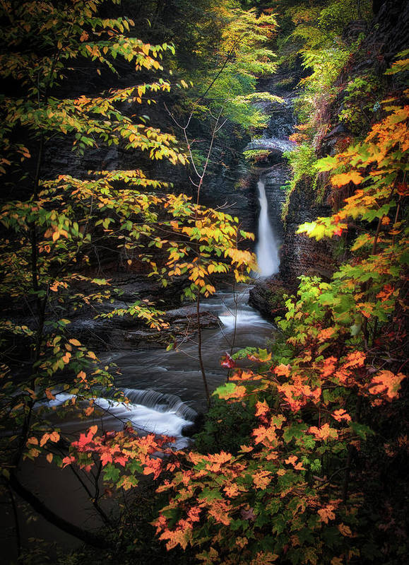 Ithaca Print featuring the photograph Surrounded By Fall by Neil Shapiro