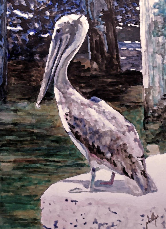 Pelican Art Print featuring the painting Taking A Break by Jim Phillips