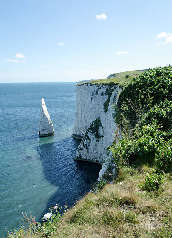Stack Art Print featuring the photograph The Pinnacle Stack Of White Chalk From The Cliffs Of The Isle Of Purbeck Dorset England Uk by Andy Smy