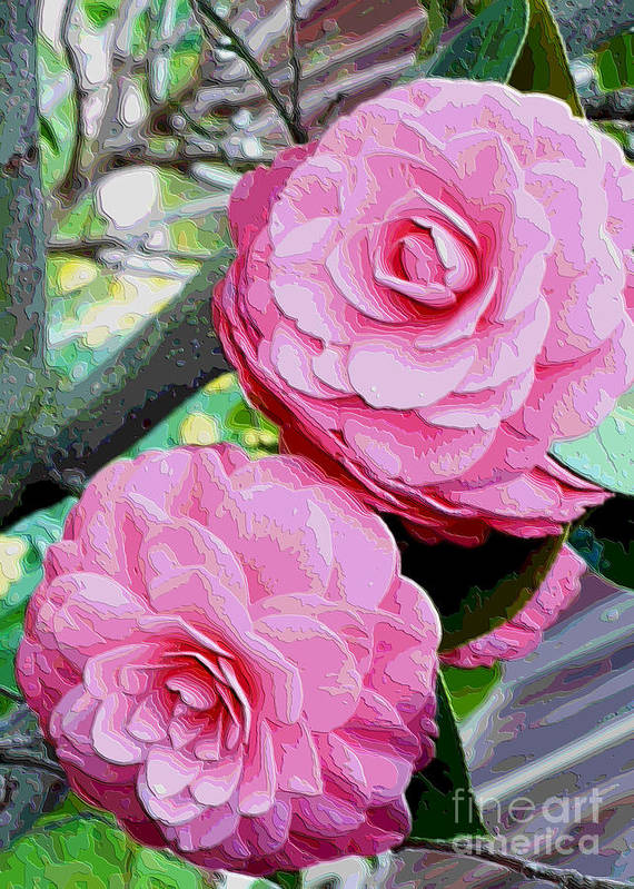 Camellia Art Print featuring the photograph Two Pink Camellias - Digital Art by Carol Groenen
