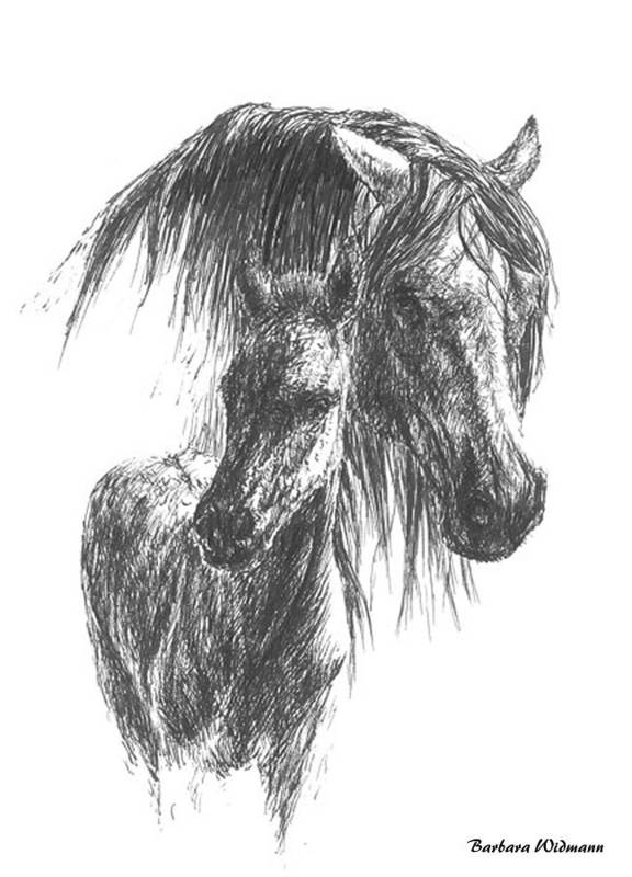 Horses Art Print featuring the drawing Wild by Barbara Widmann