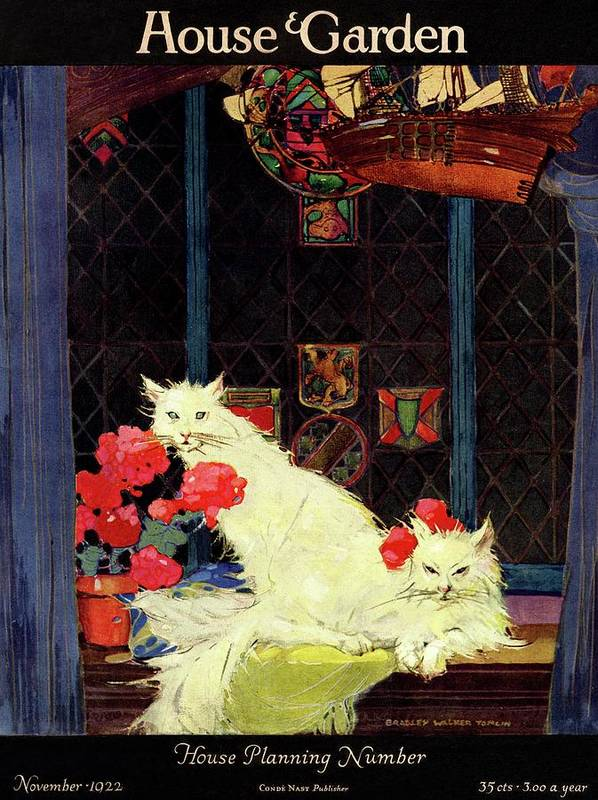 Illustration Art Print featuring the photograph A House And Garden Cover Of White Cats by Bradley Walker Tomlin