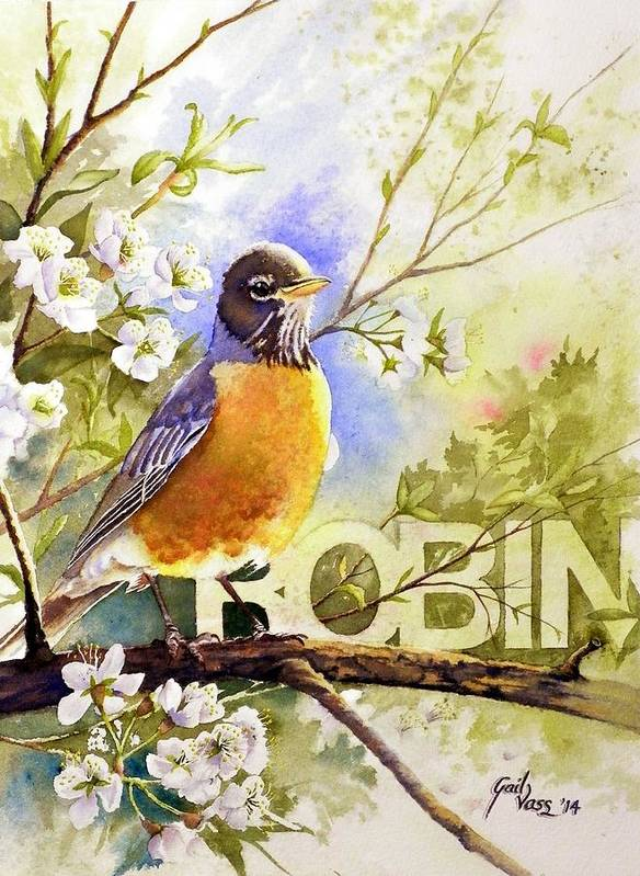 Birds Art Print featuring the painting American Robin And Wild Plum by Gail Vass