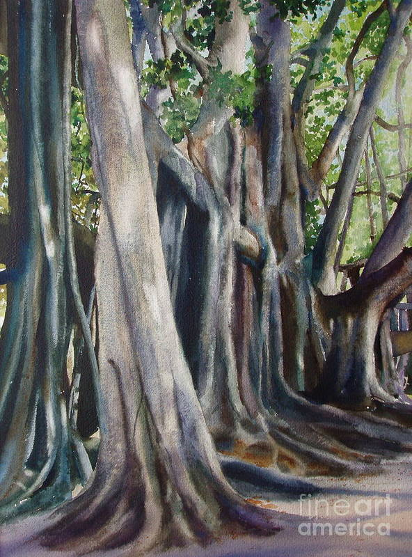 Trunks Art Print featuring the painting Banyan Trees by Karol Wyckoff
