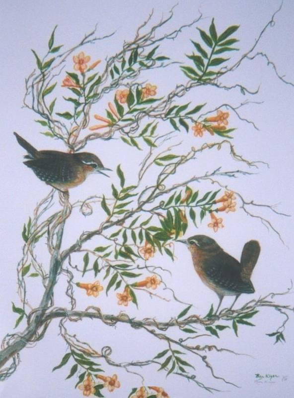 Bird; Flowers Art Print featuring the painting Carolina Wren And Jasmine by Ben Kiger