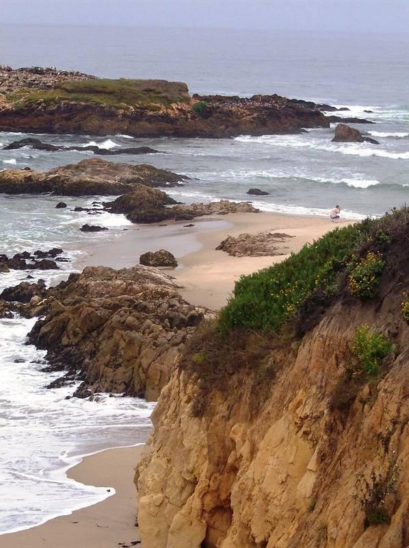 Coast Art Print featuring the photograph Coastal Scene 8 by Pharris Art