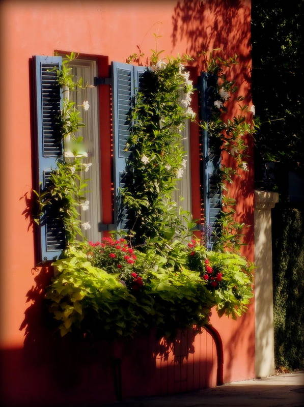 Charleston Art Print featuring the photograph Come To My Window by Karen Wiles