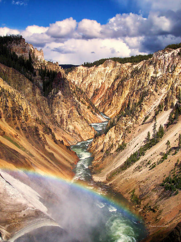 Yellowstone Art Print featuring the photograph Grand Canyon Of Yellowstone 1 by Thomas Woolworth